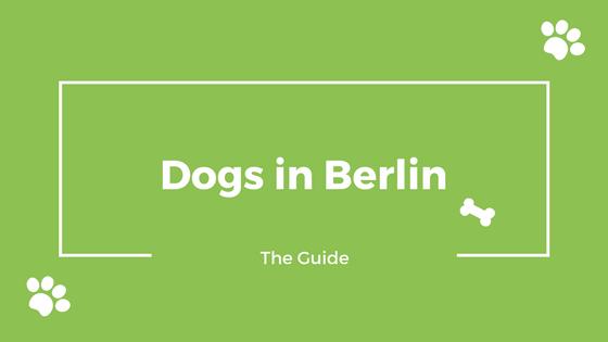 Dogs Berlin
