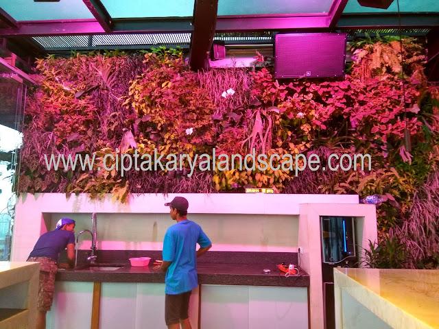 Jasa Pembuatan Taman di Jakarta | Tukang taman jakarta