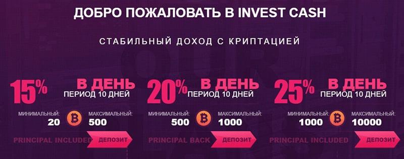 Инвестиционные планы Invest Cash