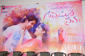 Guppedantha Prema Audio Launch Photos-thumbnail-1