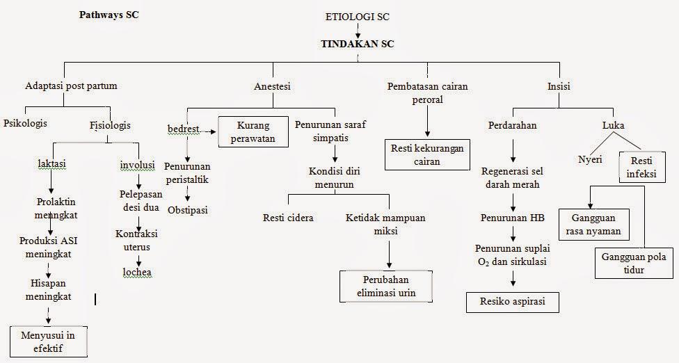 LAPORAN PENDAHULUAN SC (SECTIO CAESARIA)