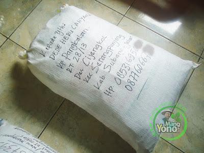 FOTO 2 :  Benih Padi TRISAKTI untuk Dede Heru Subang