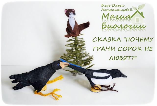 магия-биологии-пальчиковый-театр-игрушки-сорока-куница-грач