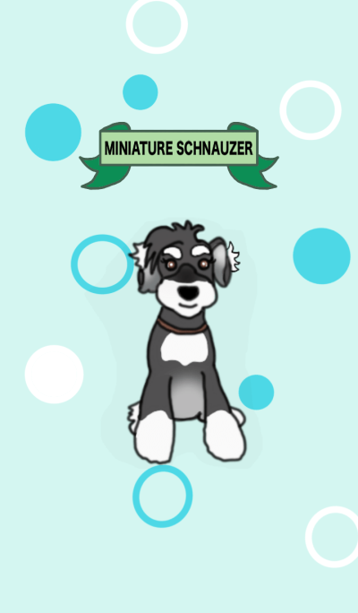ROCK the Schnauzer