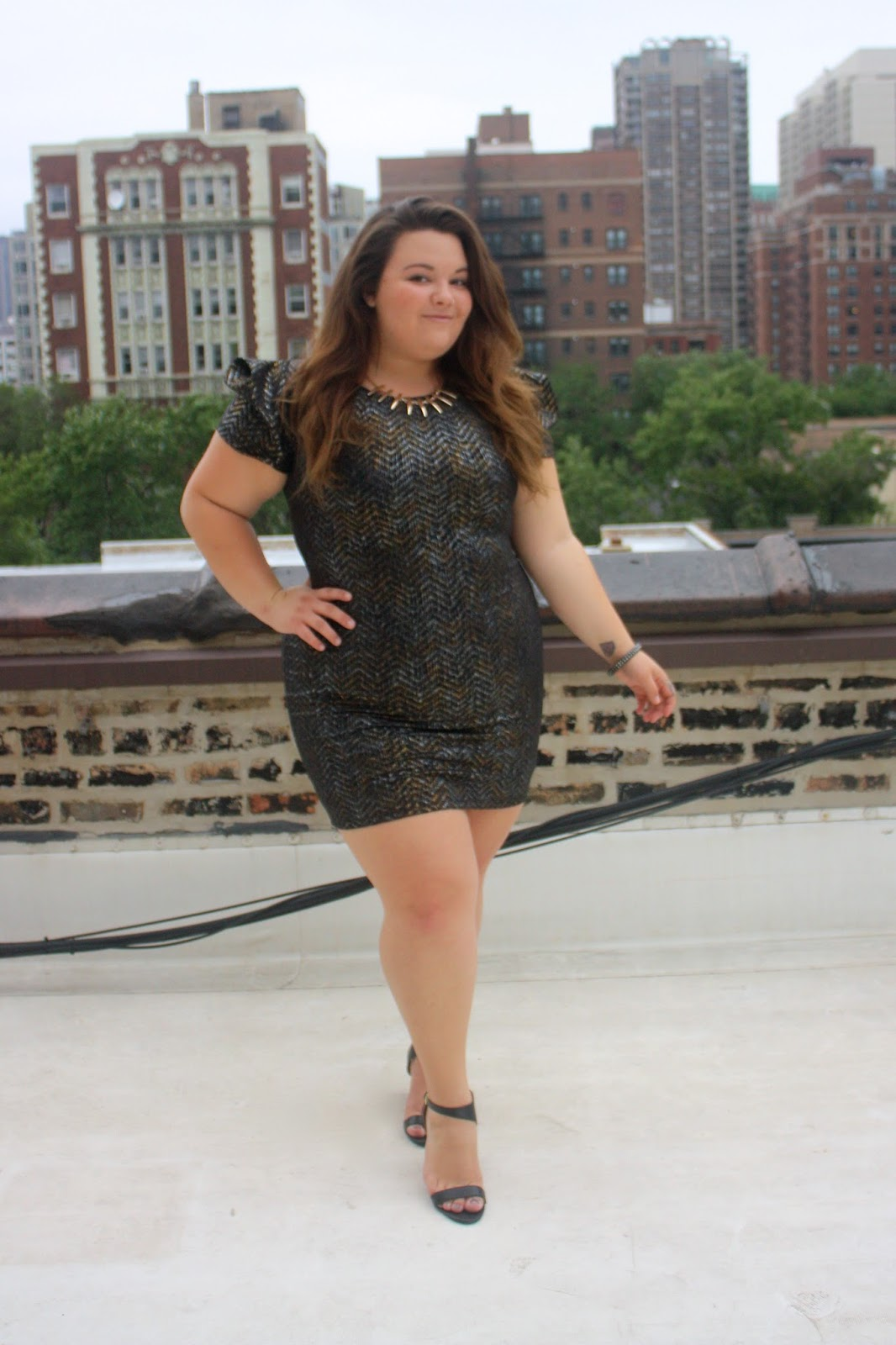 natalie craig, stylzoo, amazon, plus size fashion, ps fashion, fashion blogger, plus size fashion blogger, natalie in the city, sexy, curvy women, dress, party dress, chicago skyline