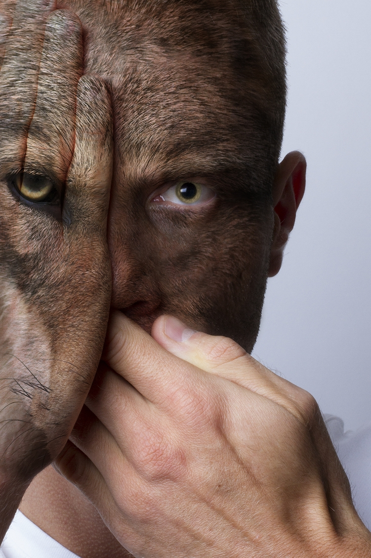 03-Devin-Mitchell-Photography-with-Animal-Faces-of-the-Wild-www-designstack-co