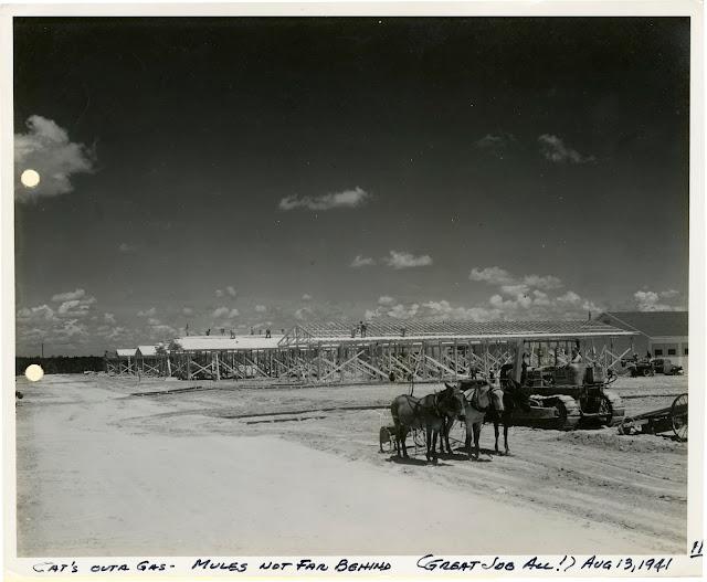 Camp Polk, 13 August 1941 worldwartwo.filminspector.com
