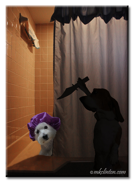 Pierre Westie and Bentley Basset re-enact the shower scene from Psycho.