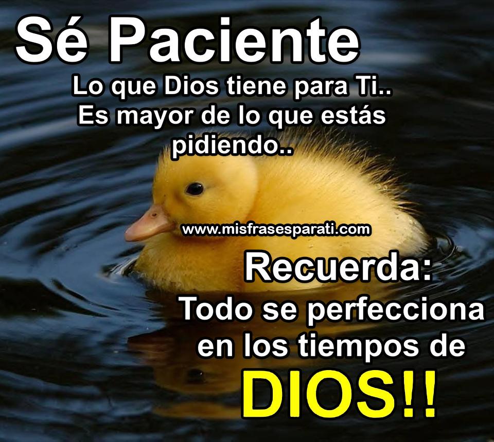 Sé paciente, lo que Dios tiene para ti es mayor de lo que estas pidiendo... Recuerda: Todo se perfecciona en los tiempos de dios