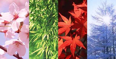 四季の自然