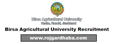 http://www.rojgardhaba.com/2017/06/bau-birsa-agricultural-university-jobs.html