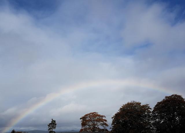 Rainbow over the nursery