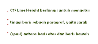 CSS Line Height