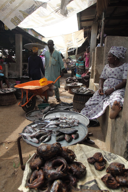 dry fish, fresh fish, the choice is yours