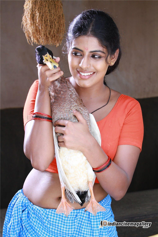 Iniya Hot And Sexy Mallu Tamil Actress Blouse Tight Navel -1799