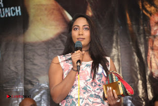HBD Telugu Movie Teaser Launch  0014.jpg