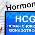 HCG as a genesis reproduction