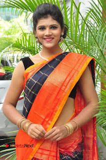 Model Sangeeta Kamath Pictures in Saree at Silk India Expo Curtain Raiser  0012.JPG