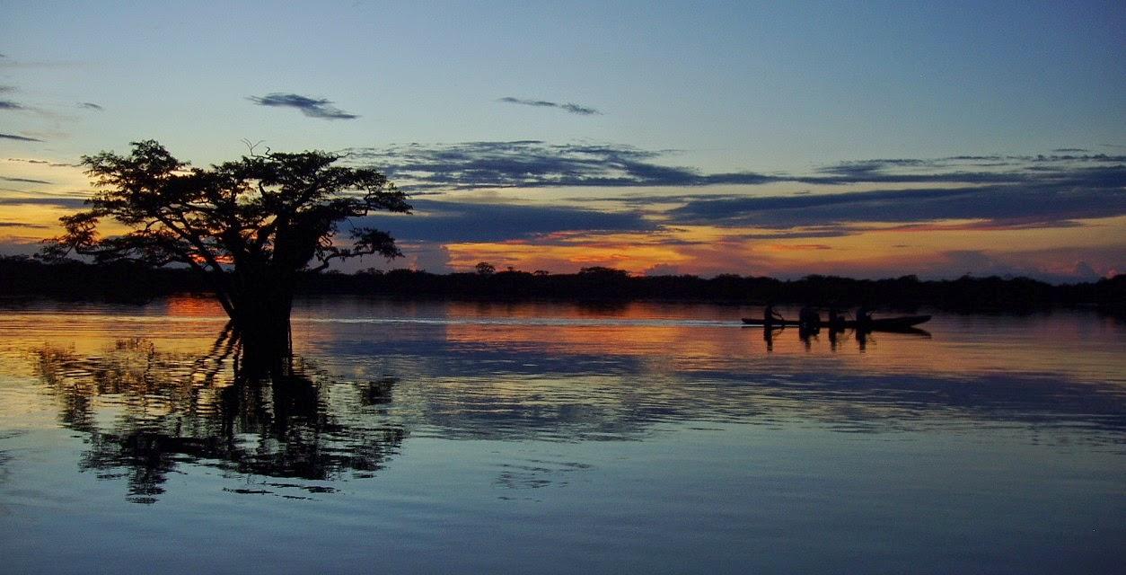 Cuyabeno Wildlife Reserve, Ecuador 10 Worlds Amazing And Beautiful Forests