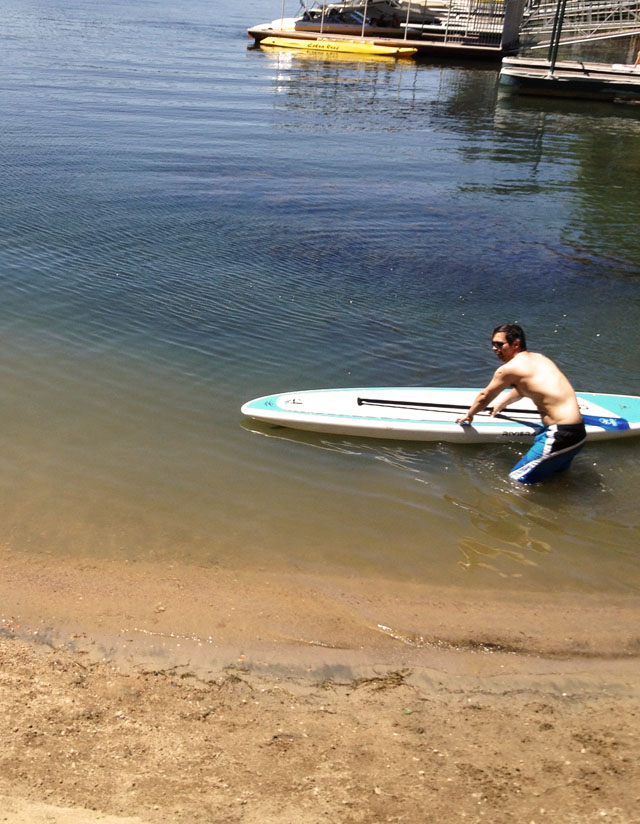 paddle board in the water