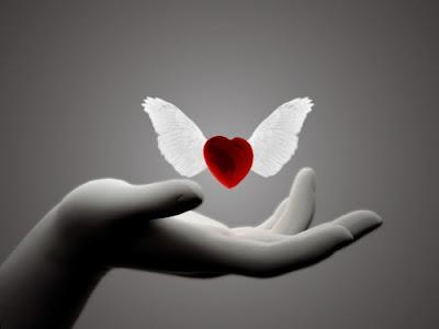 Tình yêu và đôi cánh