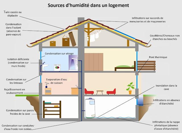 d'où vient l'humidité ans un logement?