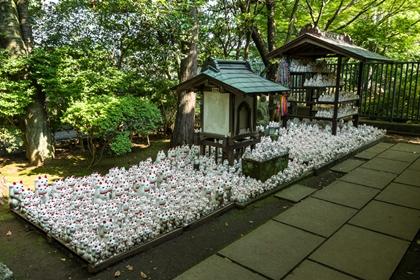 ฝูงแมวกวักในวัดโกโตคุจิ (Gotokuji Temple) @ www.aroundtokyo.net