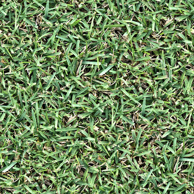 Seamless up close grass leaf blades texture