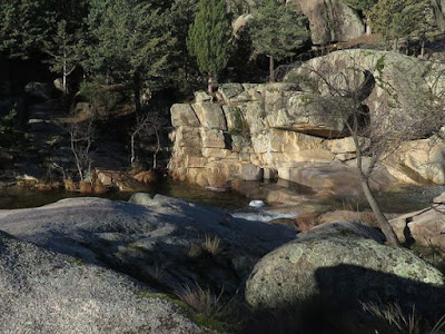 Parque Nacional de la Sierra de Guadarrama - La pedriza - con el grupo de senderismo - escapadimllas.com