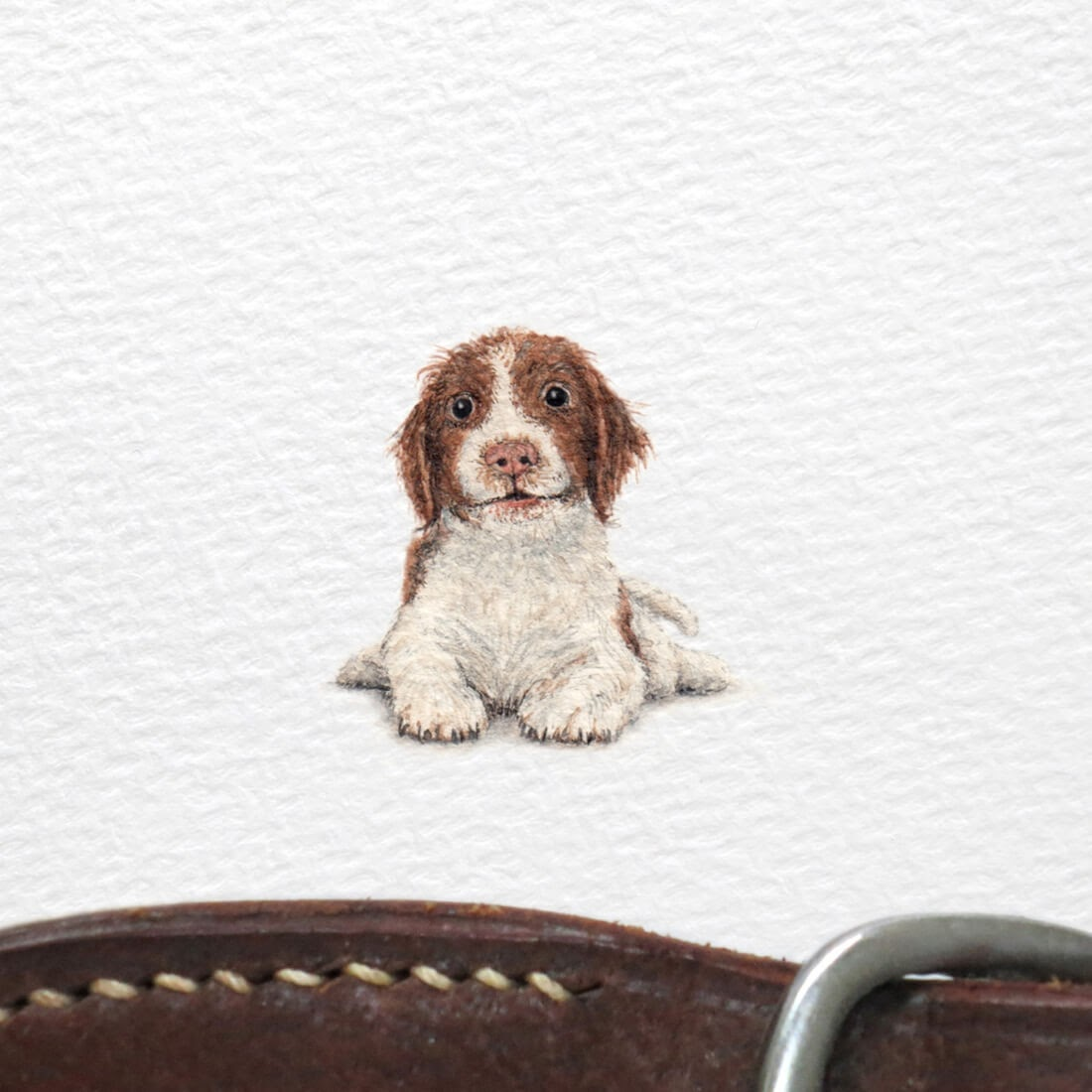15-English-Springer-Spaniel-Frank Holzenburg Miniature Drawings and Paintings of Animals-www-designstack-co