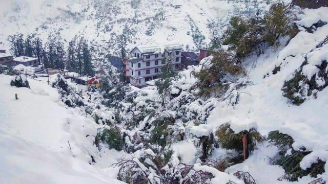 a-shepherd-died-due-to-sudden-snowfall-live-himachal