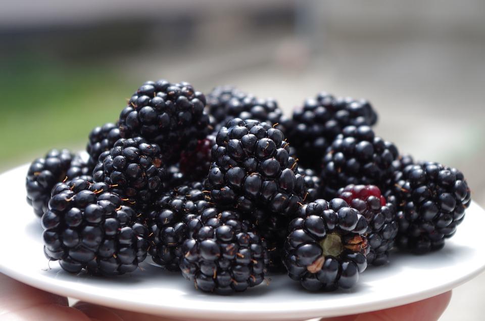 Blackberry and Roasted Apple Juice