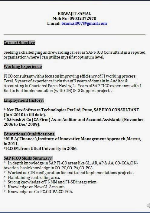 sap bi resume sample