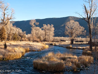 Dick's riffle, DePuy Spring Creek Montana on a frosty morning