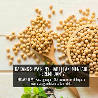 7 Mitos Tentang Kacang Soya