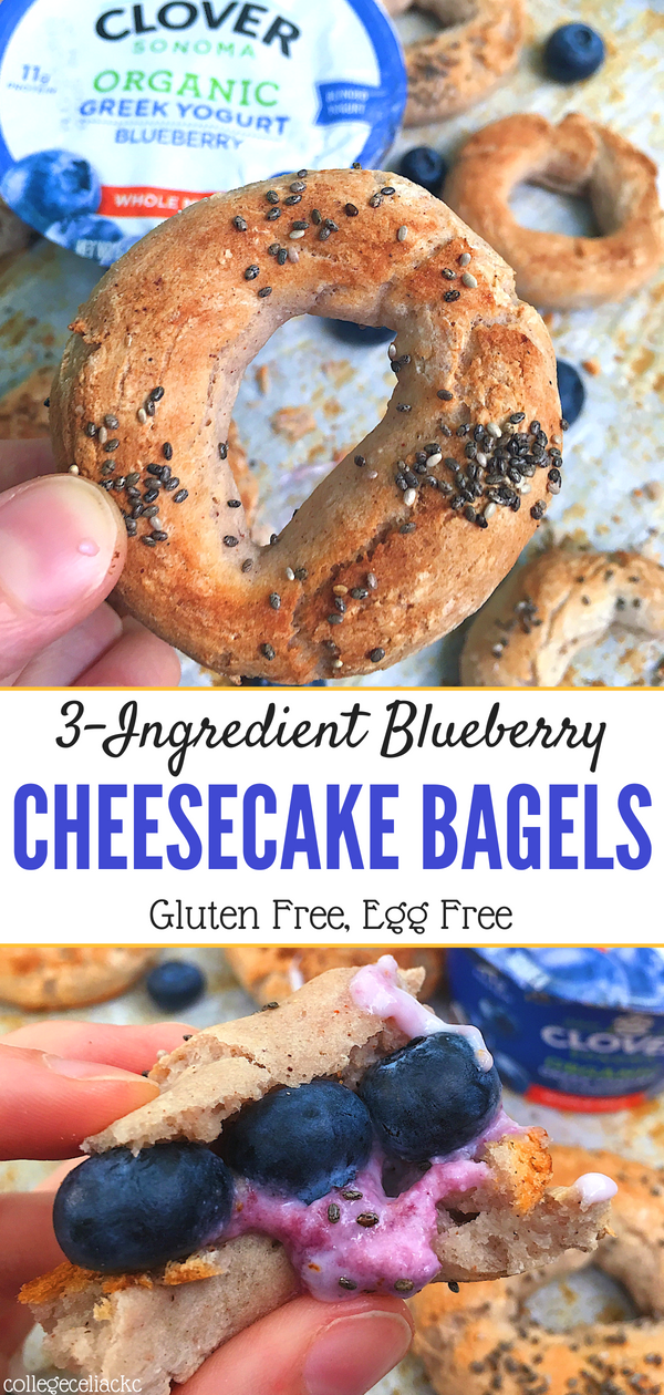 3-Ingredient Blueberry Cheesecake Bagels (Gluten Free, Egg Free)