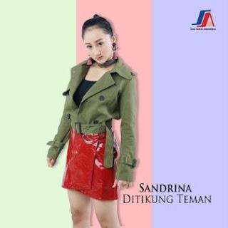 Sandrina - Ditikung Teman