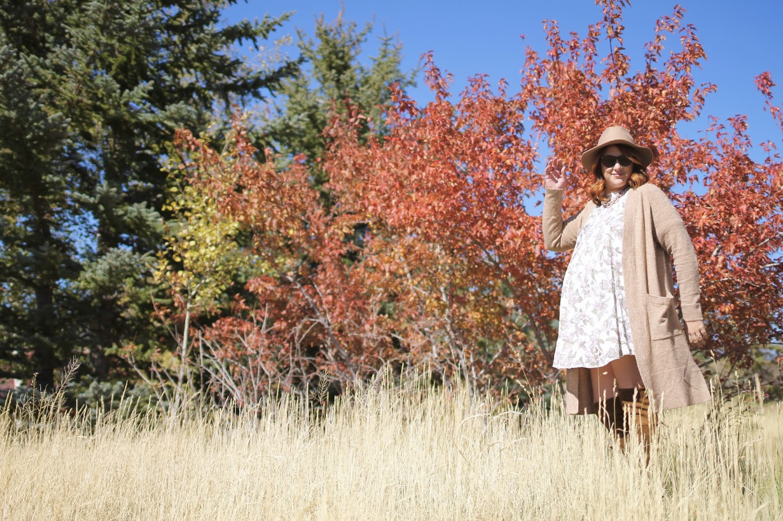aritzia dress, fall layers, Choies boots, tan hat