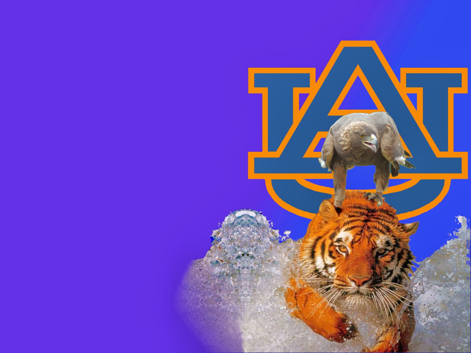 auburn football - photo #10