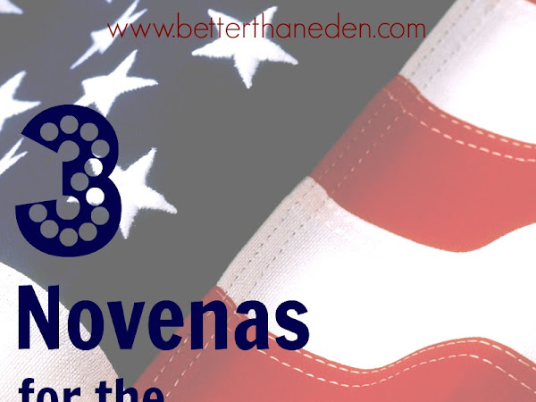 Three Novenas for the Election (and all are invited)