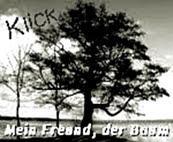 http://jahreszeitenbriefe.blogspot.de/2016/10/mein-freund-der-baum-44.html