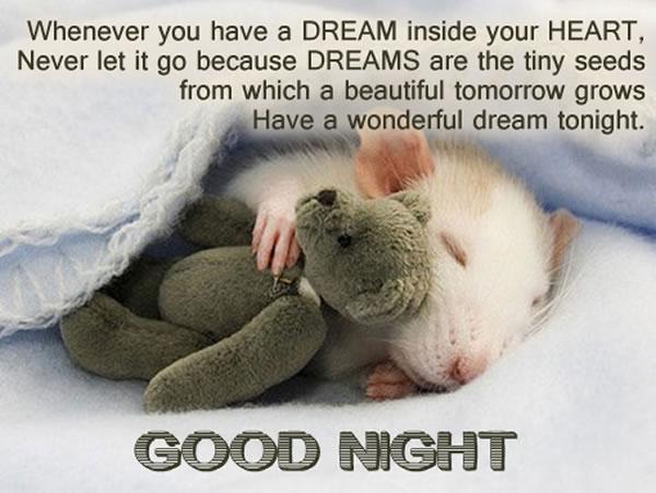 Saying good night