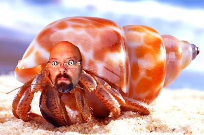 hermit-crabs.com