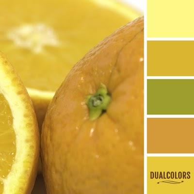 Color Paleta 150
