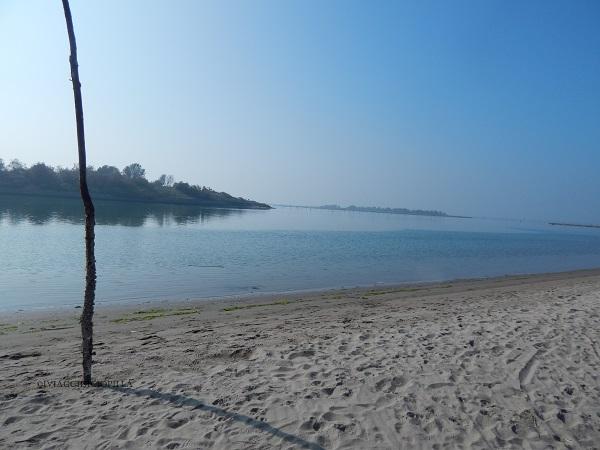 Giardino Botanico Litoraneo del Veneto: la spiaggia