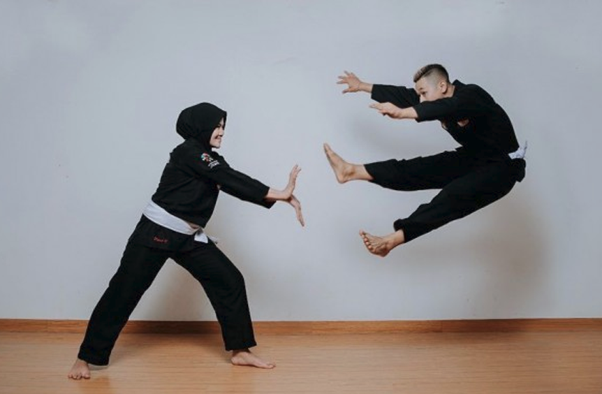 pencak silat in indonesia, authentic pencak silat, pencak silat organization