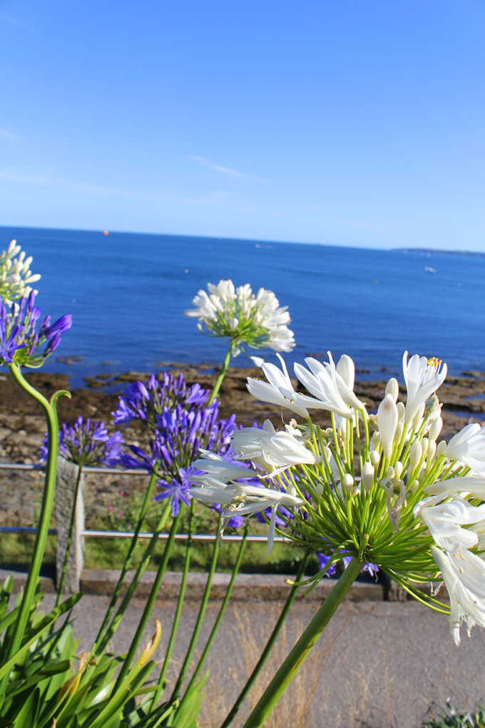 Things to see in Falmouth - The Wayfarer
