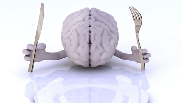 Aliments: bien nourrir son cerveau