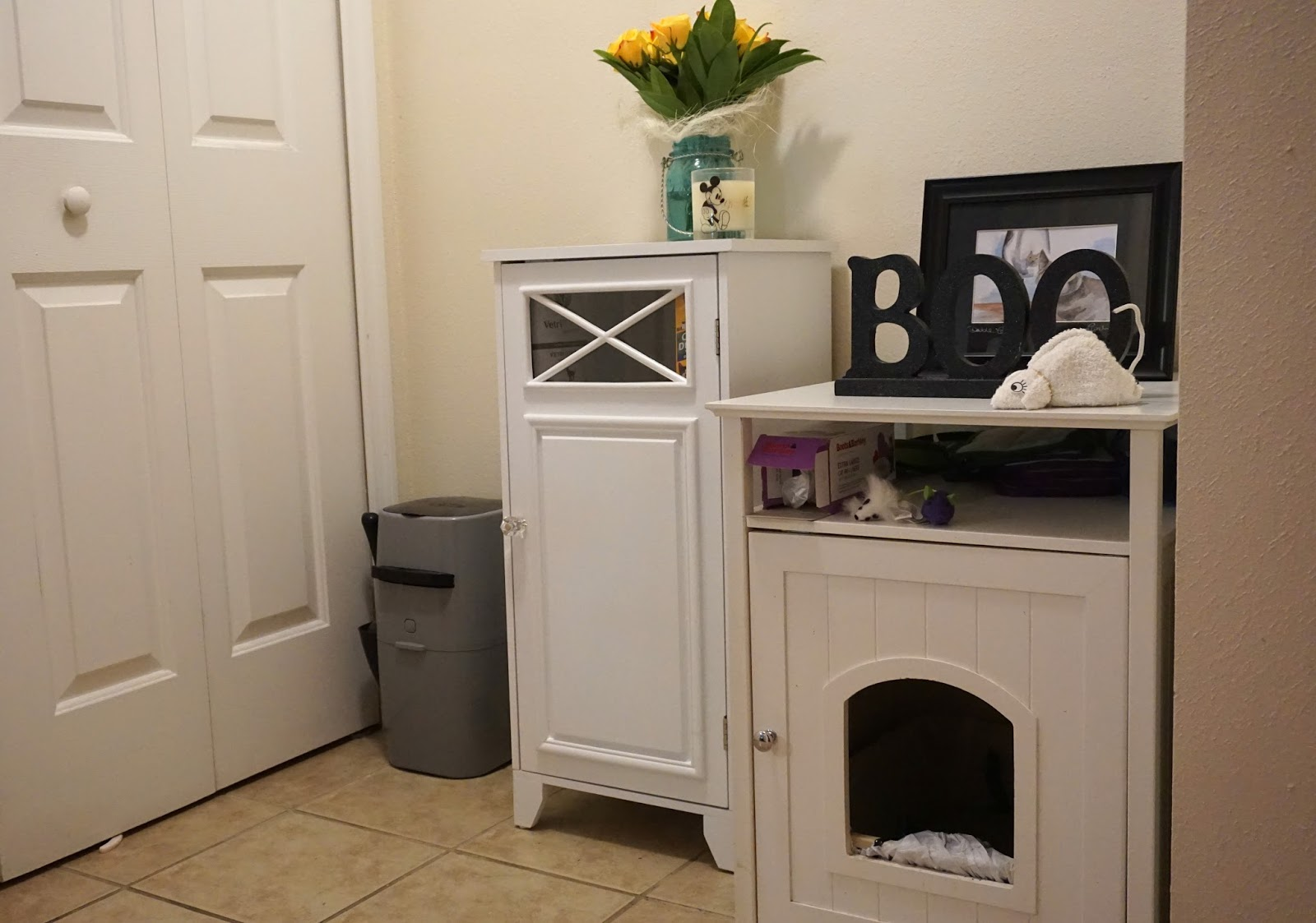 Cat Litter Box Area In A Small Living Space