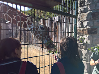 Zootage im Thüringer Zoopark Erfurt